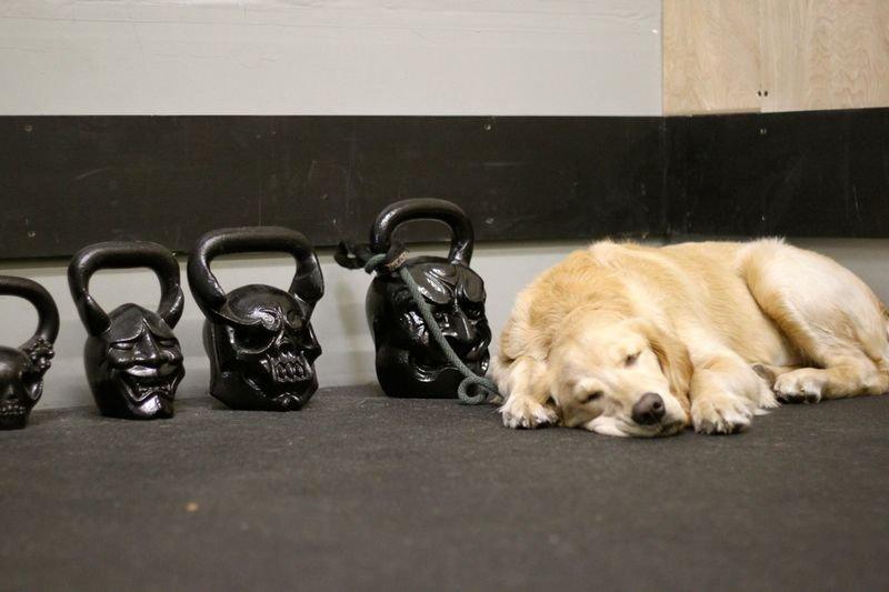 Recomendaciones para el día de descanso de CrossFit