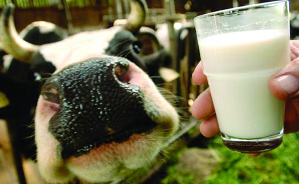 El debate de los lácteos