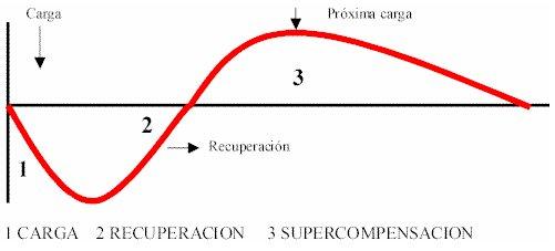 Principio de la relación optima entre carga y recuperación